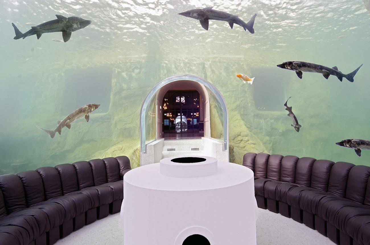 The underwater meditation room